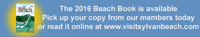The Beach Book 2016